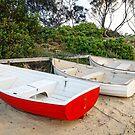 At the Edge of the Bay, Coles Bay, Tasmania by TonyCrehan