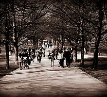 Greenwich Park by rsangsterkelly