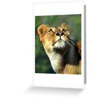 Tears in heaven Greeting Card