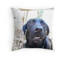 Casper 2 Throw Pillow