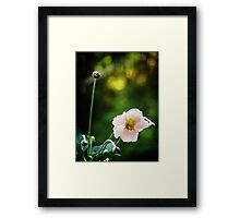 Graceful bow Framed Print