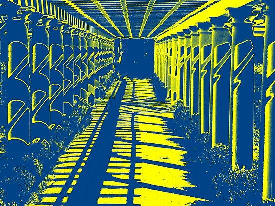 Garden Shadows by David Schroeder