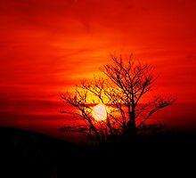 Sundown by ThePigmi