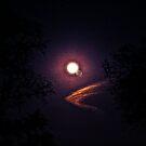 FULL MOON MAGIC by ANDREA SIDENSTRICKER