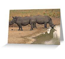 Rhino Symmetry & Reflection! Greeting Card