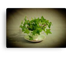 Tea Cup Ivy Canvas Print