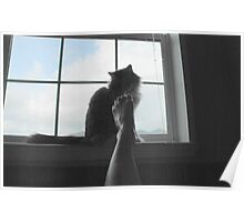 Bath Time with Kitty Poster