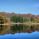 Yew Tree Tarn by Irene  Burdell