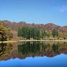 Yew Tree Tarn by Irene  Burdell