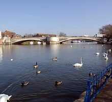 Caversham Bridge River Thames by Jim Hellier
