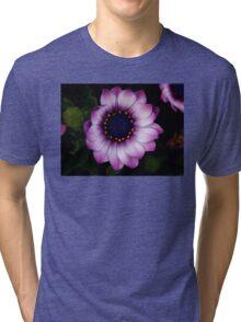 Osteospermum Dark Tri-blend T-Shirt