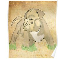 Brindle Pit Poster