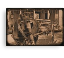 Saloon Taxi Canvas Print