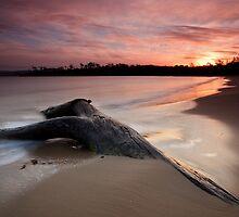 Randalls Bay Sunset #10 by Chris Cobern