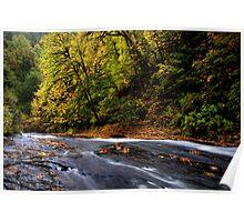 Upper Lake Creek ~ Slide Rock ~ Poster
