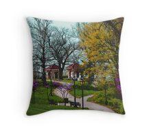 Kansas City Color Throw Pillow