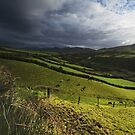 Dingle road 3 by Paul Woods