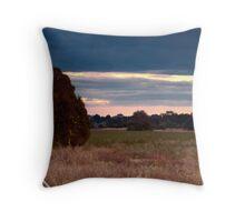 Sale Wetlands, Victoria, Australia. Throw Pillow