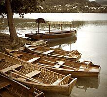Lake Bled - Slovenia by Calin Lapugean