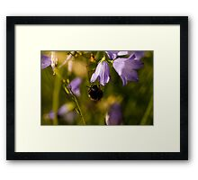 This one is mine! Framed Print