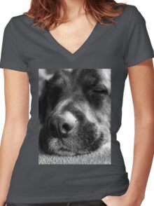 Let sleeping dogs lie Women's Fitted V-Neck T-Shirt