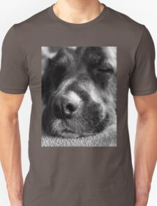 Let sleeping dogs lie T-Shirt