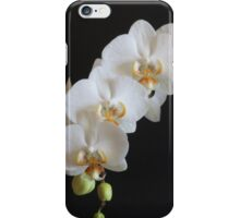 Orchid iphone cover iPhone Case/Skin