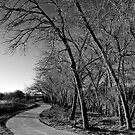Bikepath by JRRouse