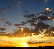 Let The Sun Rise and Shine~ by Brenda Dahl