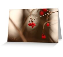 Abstract Red Berries Greeting Card