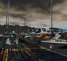marina (roche harbor, wa) by Anthony DiMichele