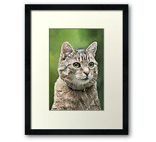 I mis you... Framed Print