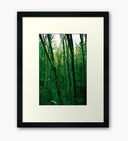Green machina Framed Print