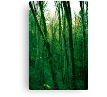 Green machina Canvas Print