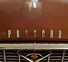 1955 Packard 400 Hood Ornament by Jill Reger