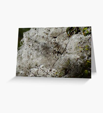 Like Snowslide - Como Una Avalancha  Greeting Card
