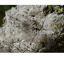 Like Snowslide - Como Una Avalancha  Photographic Print
