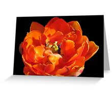 """Orange Princess"" Greeting Card"