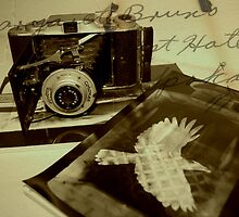 Old Camera  by HopefulHarrie