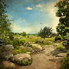 Peaceful Path by Jessica Jenney