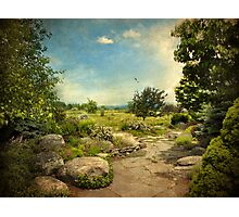 Peaceful Path Photographic Print