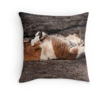 Pig in mud!!!!!!!!!!!!!!! Throw Pillow