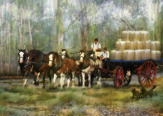 The Wool Dray by Trudi's Images