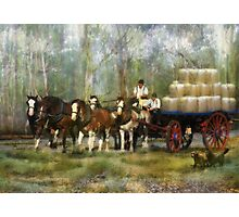 The Wool Dray Photographic Print