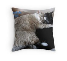 Dedicated To Lovers Everywhere Throw Pillow