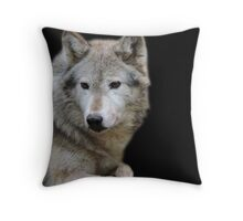 Behind Every Pair of Eyes Is A Life Full of Stories Throw Pillow