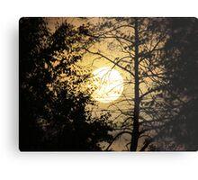 Moon Silhouette ~ Metal Print