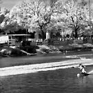 Moomba Masters IR by peterperfect