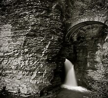 Watkins Glen State Park by Jeff Palm Photography