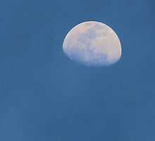 Afternoon Moon by Bob Hardy